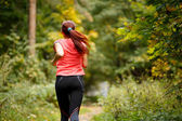 sporty  woman running in forest