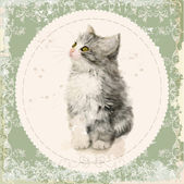 Vintage card with fluffy kitten Imitation of watercolor paintin