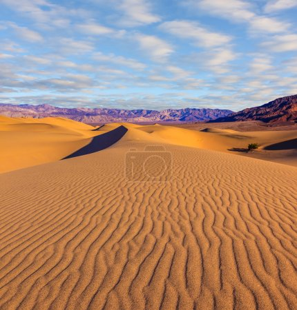Mesquite Flat Sand Dones
