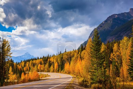 Photo for Canada, Rocky Mountains. Highway in Banff National Park. Mountains and colorful autumn forest illuminated by the sunset - Royalty Free Image