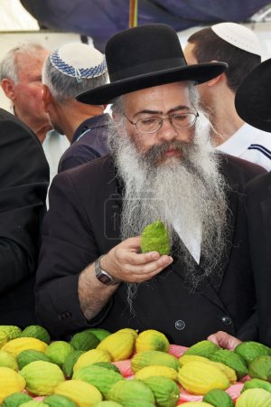 Jew very carefully examines citrus - etrog