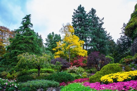 Scenic landscaped park-garden