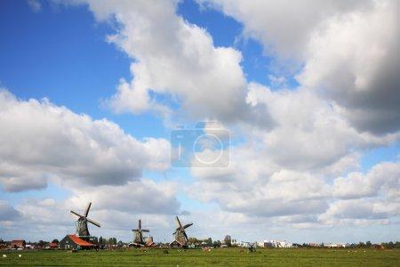 windmills on flat green plain