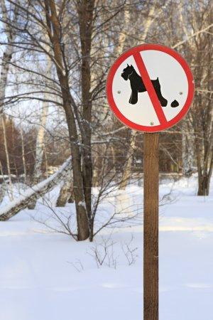 Photo pour Signer le chien plus que rébarbatif à pied dans le parc - image libre de droit
