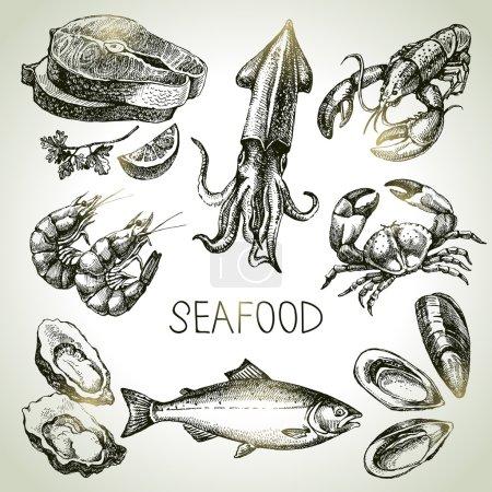 Illustration for Hand drawn sketch set of seafood. Vector illustration - Royalty Free Image