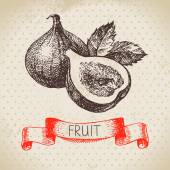 Hand drawn sketch fruits figs