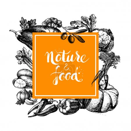 Illustration for Eco natural food menu background. Sketch hand drawn vegetables frame. Vector illustration - Royalty Free Image