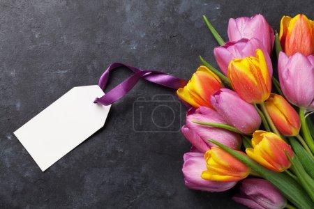 Fresh colorful tulip flowers