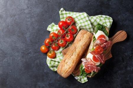 Ciabatta sandwich with romaine salad