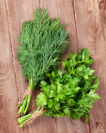 Fresh garden dill and parsley