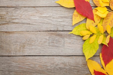Photo for Colorful autumn leaves on woden background with copy space - Royalty Free Image