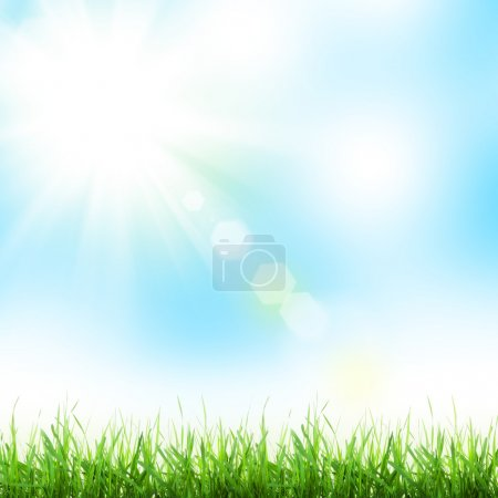 Photo for Abstract sunny spring background with grass - Royalty Free Image