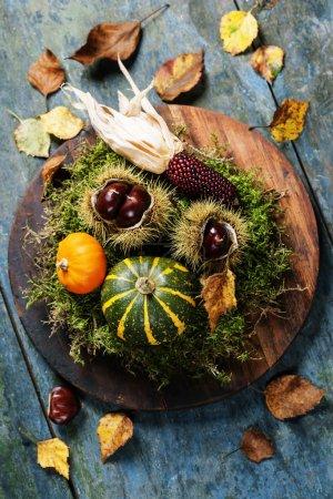 Photo pour Concept d'automne avec fruits et légumes de saison sur planche de bois - image libre de droit