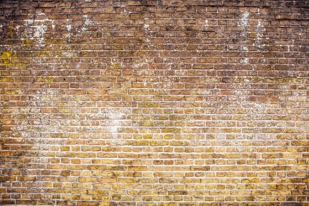 Antique brick stone wall texture. Photo Background.