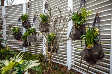 Photo pour Éléments décoratifs floristiques close-up . - image libre de droit