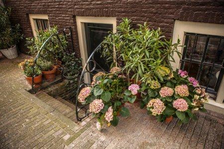 Traditional door in residential