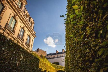 Traditional architecture of Paris