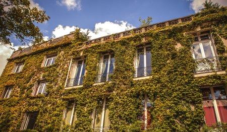 Photo pour Façade du bâtiment traditionnel au centre-ville de Paris, France - image libre de droit