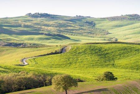 Photo pour Belle campagne de Toscane . - image libre de droit