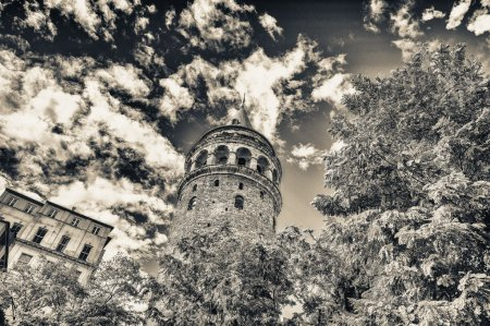 Magnificence of Galata Tower framed by trees