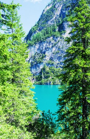 Photo for Wonderful green colors of Braies lake - Mountain landscape in Italy. - Royalty Free Image