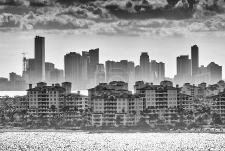 Miami silhouette skyline