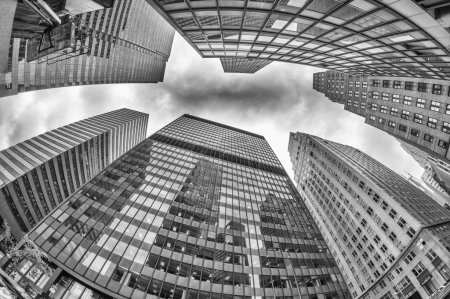 Photo for Skyward view of Office Skyscrapers, New York City. - Royalty Free Image