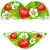Vektorové jahodový rám ve tvaru srdce