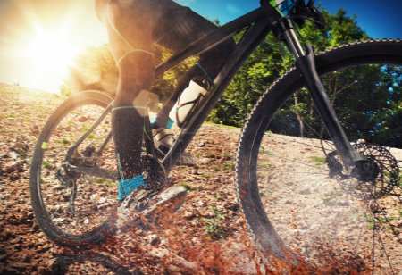 Mountain biker cycling on ground