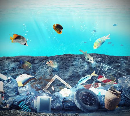 Pollution in the seabed