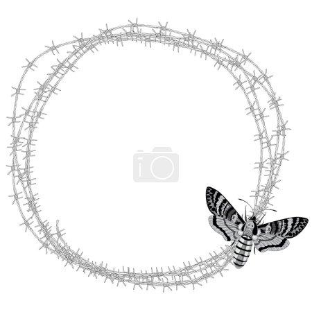 death's head hawk moth (Acherontia atropos) and barbed wire