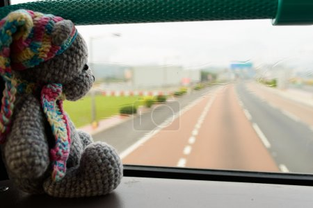 Traveling toy bear