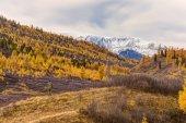 Fotograf má podzimní krajina