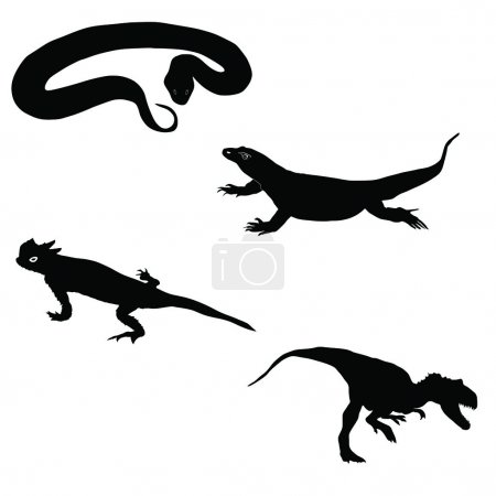 Illustration for Snake,desert horned lizard,Komodo dragon,allosaurus - Royalty Free Image