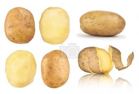 Collection of potatoes peeled, in the peel on an isolated white