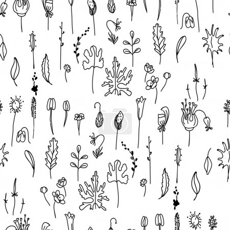 Illustration for Seamless pattern with floral seeds.Black and white.   Endless texture for your design, announcements, postcards, posters. - Royalty Free Image