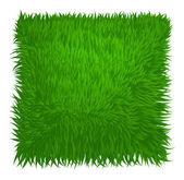 Green grass texture rectangle isolated on white. Vector illustra
