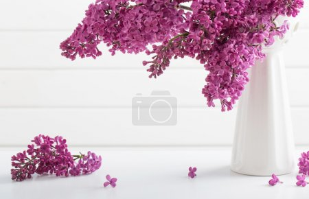 The beautiful lilac on white background