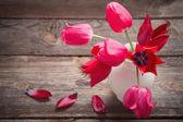 červené tulipány na staré dřevěné pozadí