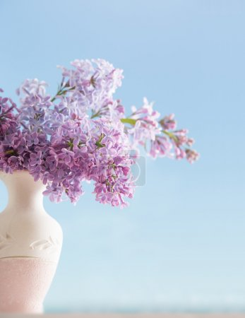 lilac in vase on background sky