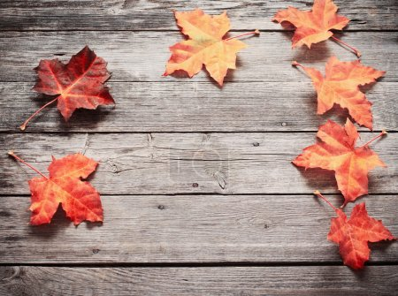 Photo for Autumn Leaves over wooden background - Royalty Free Image