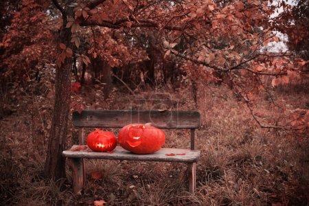 halloween pumpkin on a wooden bench