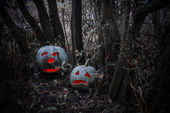 halloween pumpkin in a dark forest