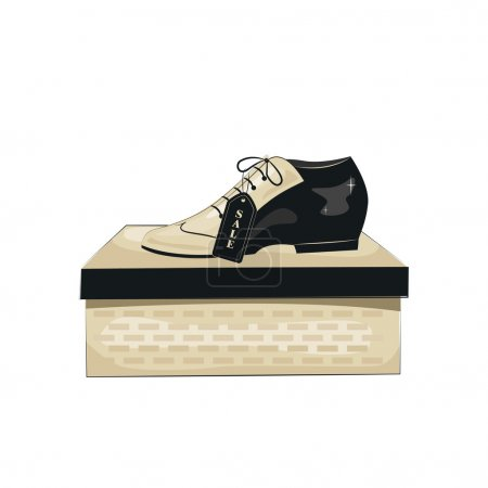 Elegant men's shoes on box.