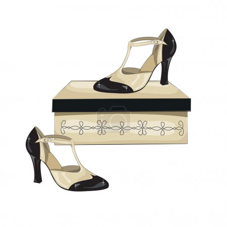 Elegant women's shoes on the box.