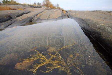 Rocky bath in  sea after low tide