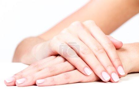 Well-groomed female hands