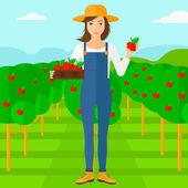Farmář sbírání jablek
