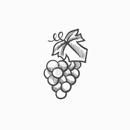 Grape sketch icon.