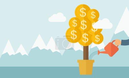 Growing money plant.